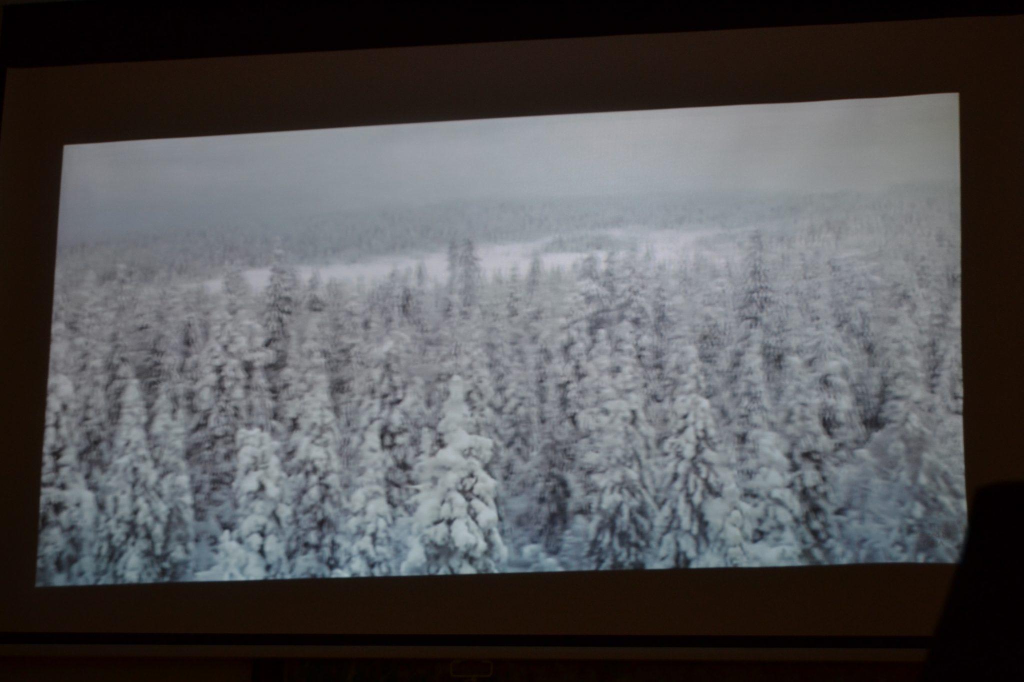Sibeliuksen Finlandia sävelin ja kuvin
