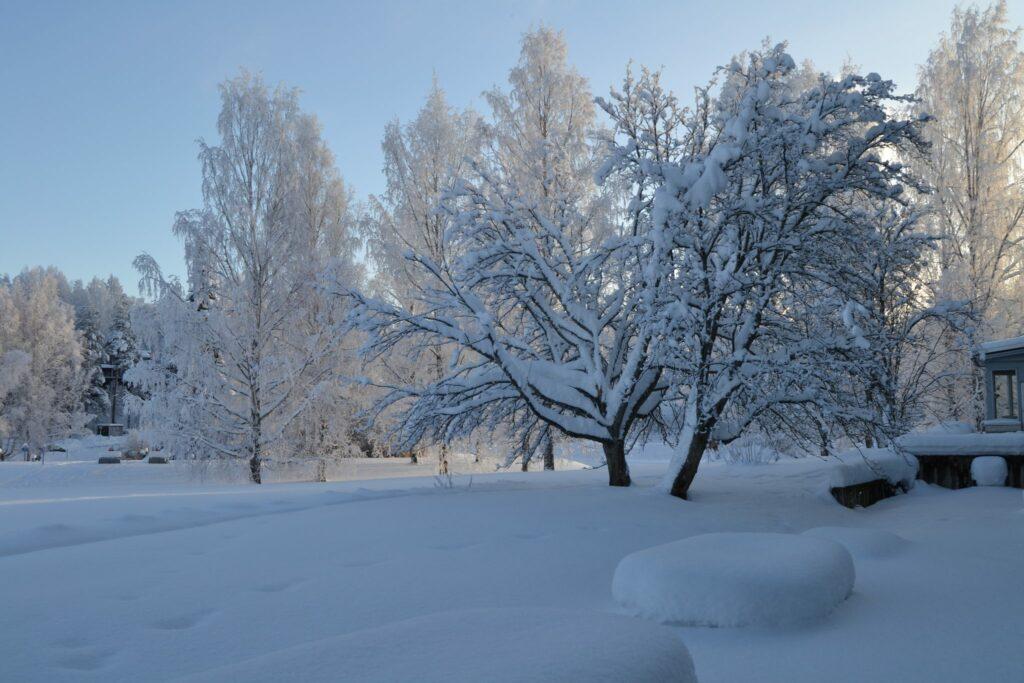 Kukka-altaatkin ovat täyttyneet lumesta