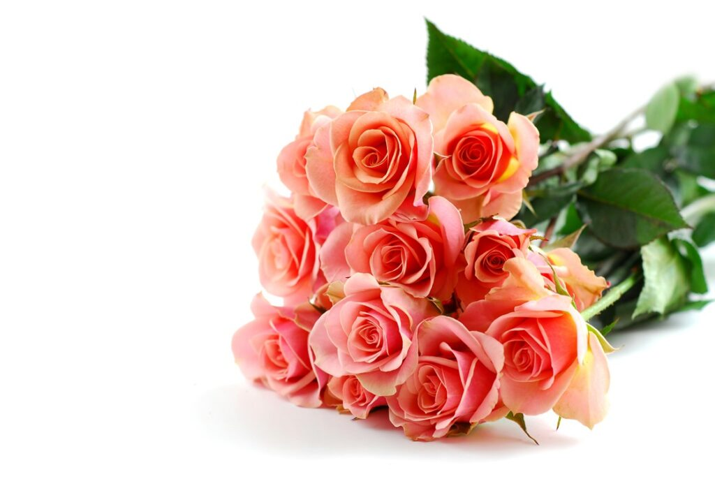 Isänpäivää Viitakodissa: onnittelut ja ruusu jokaiselle isälle